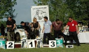 Special Cane Corso Show Velika Greda